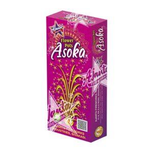 Flowerpots Asoka II